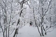 Venčac-Bukulja 23.01.2011.